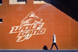 Wolfgang esports by Jonk